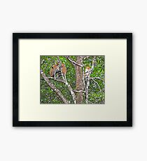 FORAGE & FOLIAGE Framed Print
