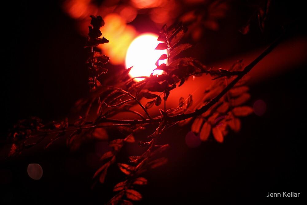 Red Tree 2 by Jenn Kellar