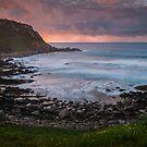 Petrel Cove by Ryan Carter