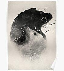 Polar Opposites  Poster