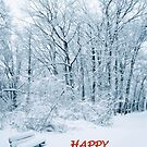 HAPPY HOLIDAYS! by Daniel Sorine