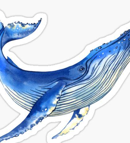 Watercolor whale Sticker