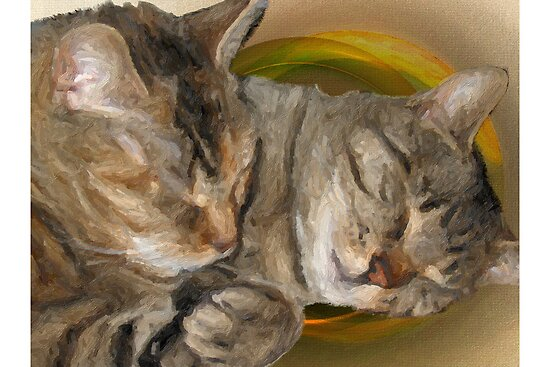 Sandy and Buster Brown Sleeping by troutusa