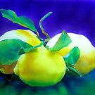 Amalfi Lemons by Donna Jill Witty