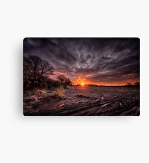 :Middle Earth: Canvas Print