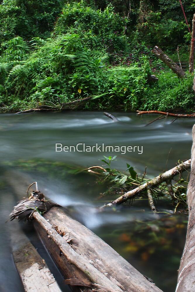 Vabuiagi River  by BenClarkImagery