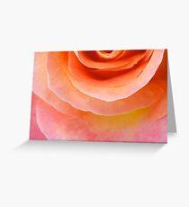 Sunset Peach Rose Greeting Card