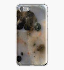 beautifully disgusting 2 iPhone Case/Skin