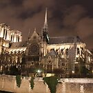 Notre-Dame de Paris by Elena Skvortsova