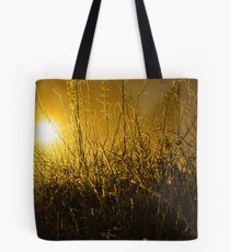icy twigs and branches in snow against orange sunset Tote Bag