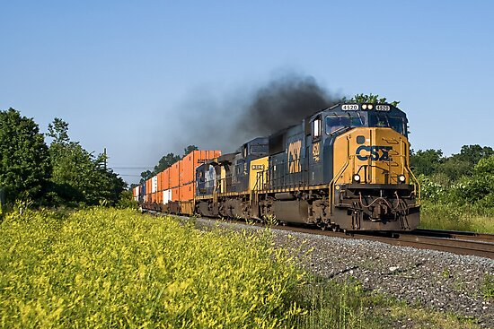 Dielsel Locomotive Hard At Work by StonePhotos