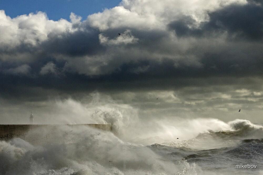 West Beach Mayhem by mikebov