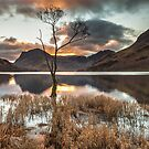 The Loner, Buttermere by Brian Kerr