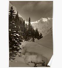 Deep snowy creek Poster
