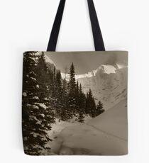 Deep snowy creek Tote Bag