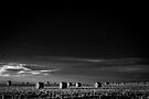 ND Study in Black & White II by Nate Welk