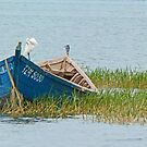 Fishing boat on Lake Victoria by Linda Sparks
