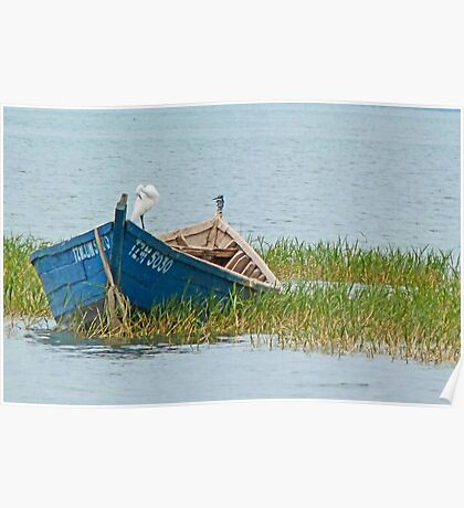 Fishing boat on Lake Victoria Poster