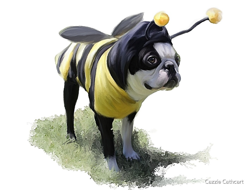 DJ the Bumble Bee Boston by Cazzie Cathcart