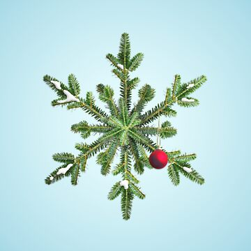 Christmas Snowy Pine Snowflake by azzza