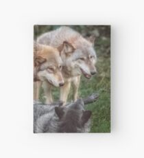 The Pack Hardcover Journal