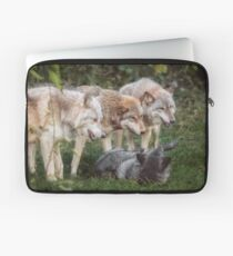 The Pack Laptop Sleeve