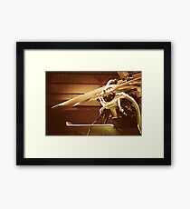 Beauty in the Air II Framed Print