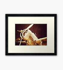 Beauty in the Air IV Framed Print