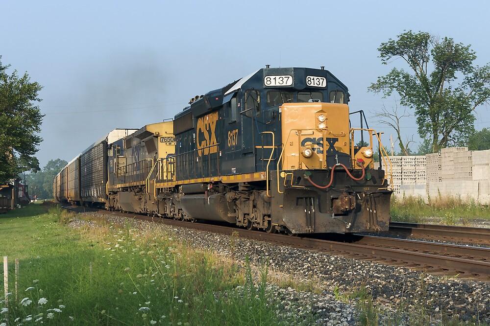 Autorack Train by StonePhotos