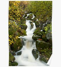Mountain stream 2 Poster