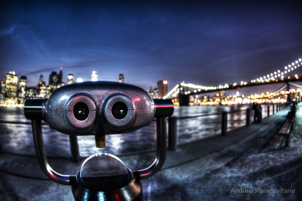 Robot Views by Andrew Paranavitana