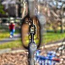 Chain-Linked by Cranemann