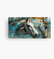 The noble horse and his alter ego Canvas Print