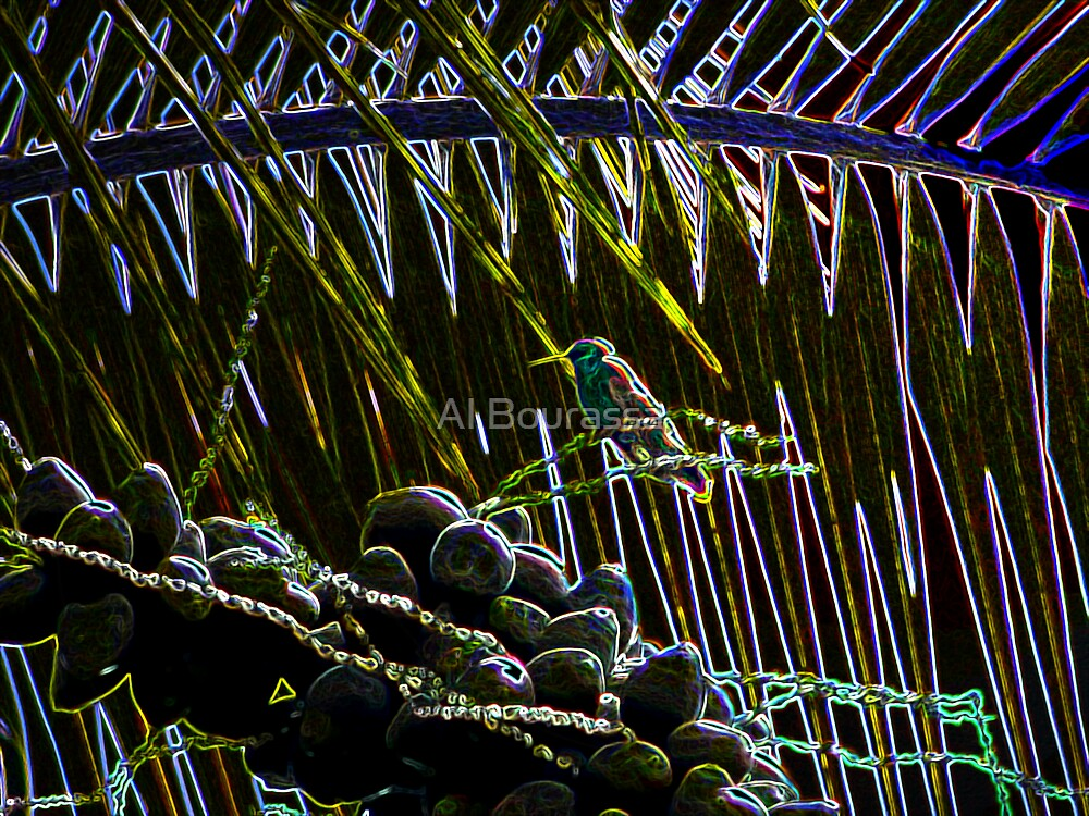 Hummer In The Palms by Al Bourassa