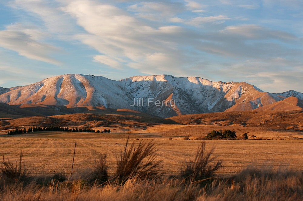Central Otago by Jill Ferry