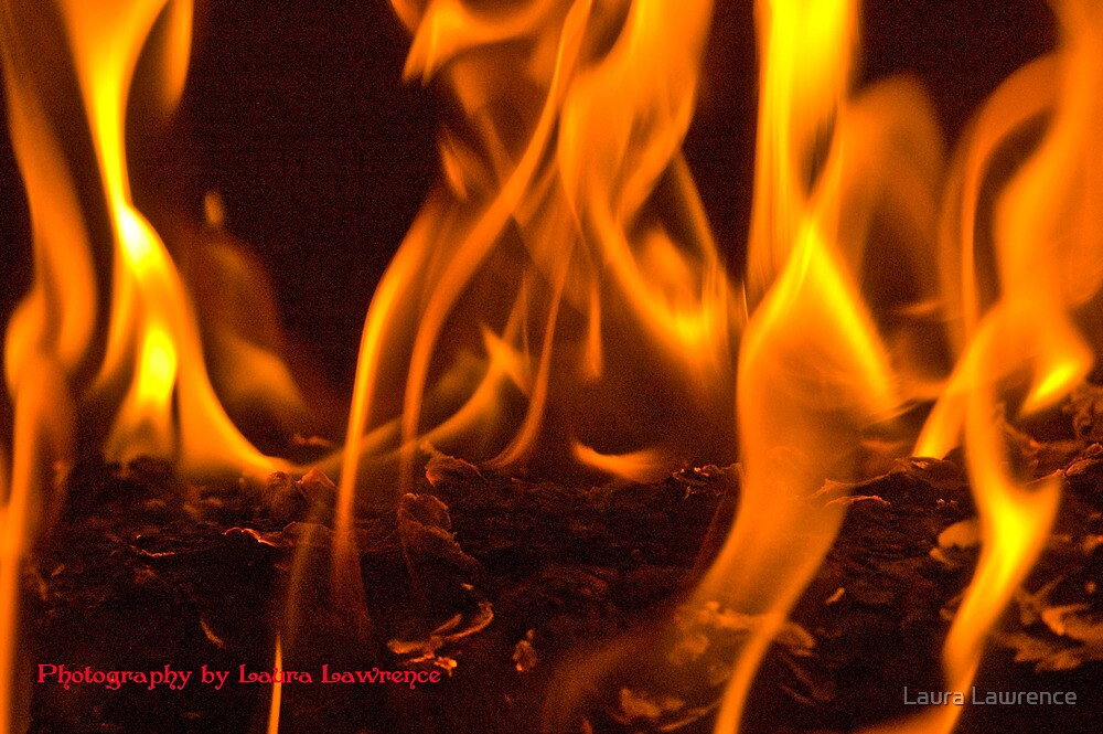 Fire by Laura Lawrence by Laura Lawrence