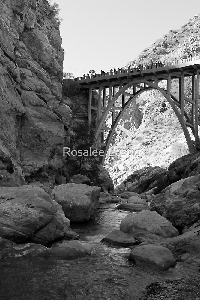 Bridge to Nowhere by Rosalee Lustig