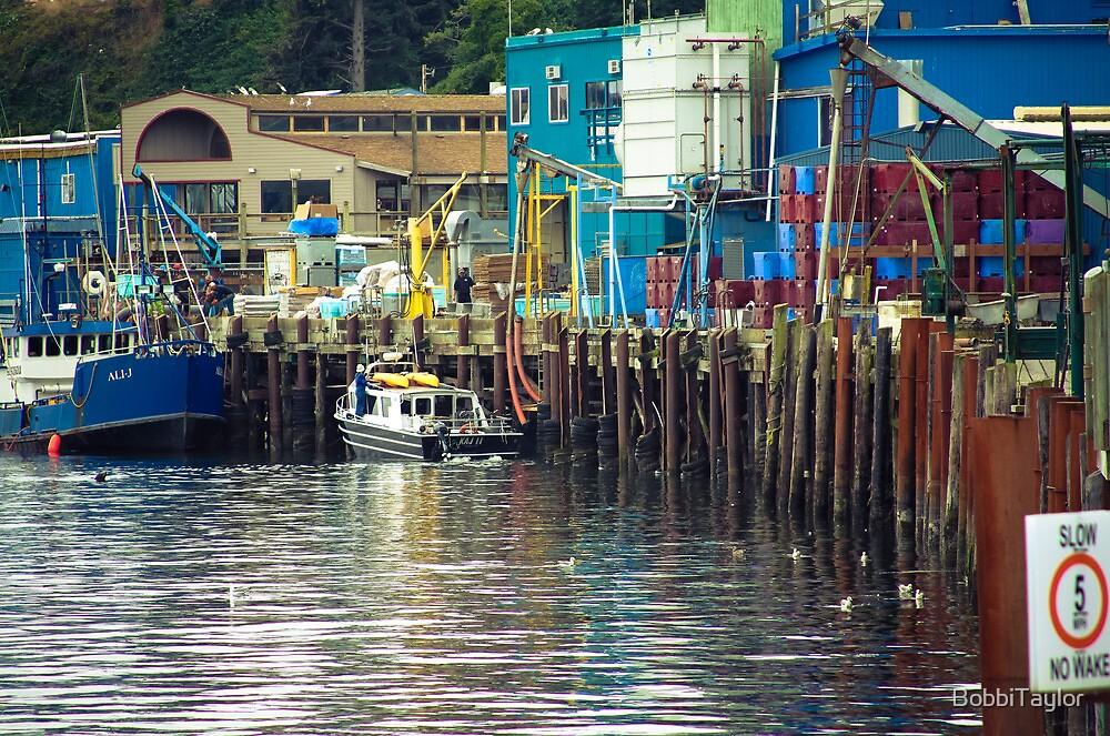 Fishing Village by BobbiTaylor