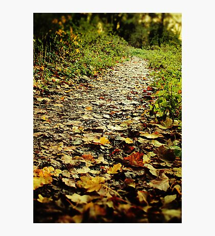 Feet Firmly on the Path Photographic Print