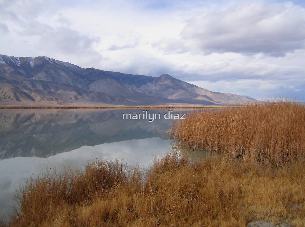 Fall reflections by marilyn diaz