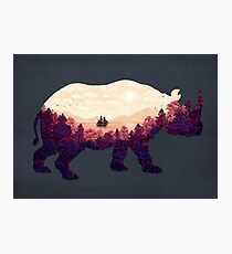 Rhinoscape Photographic Print