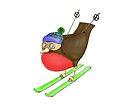 Skiing Robin by Jennifer Kilgour