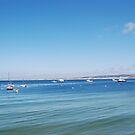 Monterey Bay, California by Deborah Singer