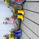 Shoe Flowers - Homer by JagiShahani