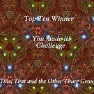 Top Ten - Creations by quiltmaker