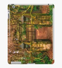 Mount Wilson IPAD COVER #4 iPad Case/Skin
