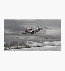 P51 Mustang - Winter Freedom Photographic Print