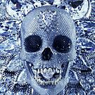 Crystal.Skull by suburbia