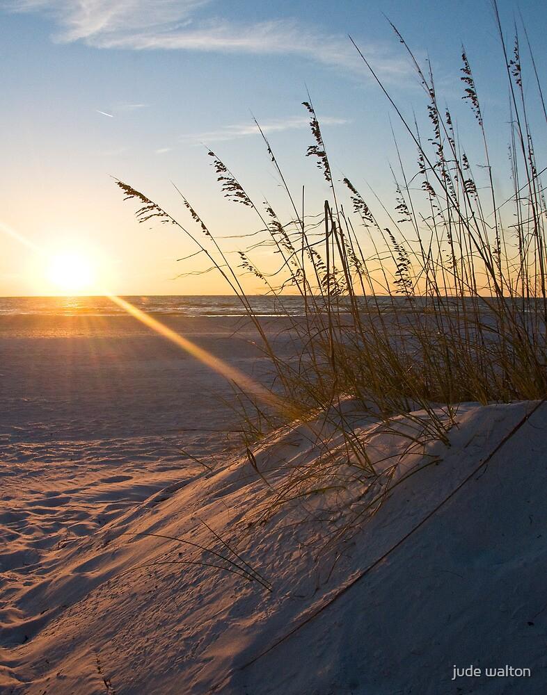 Florida Sunset by jude walton