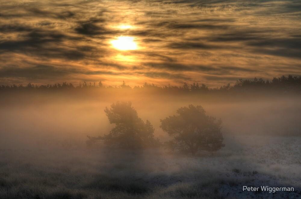 Veluwezoom by Peter Wiggerman